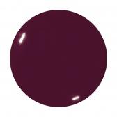 Color Gel ( 5 гр.) Sweet Berry